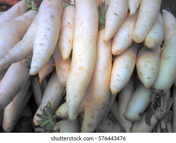 Harvest in Asia. Summer-and-winter radish scattered evenly, bazaar. Background