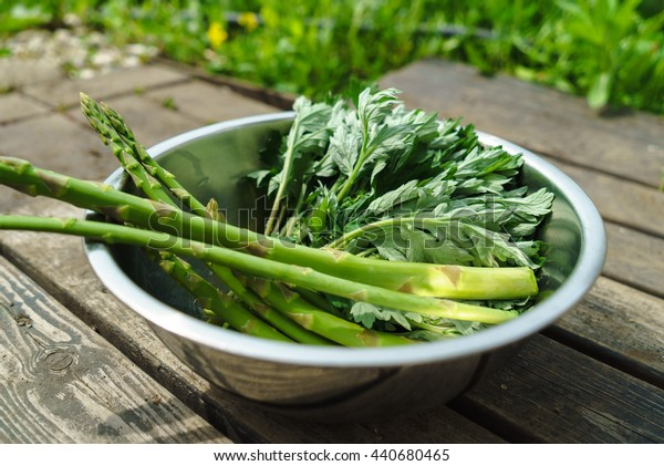 Harvest of asparagus and japanese mugwort