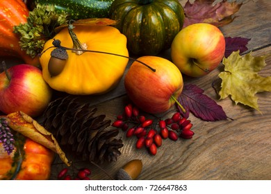 Harvest concept with yellow squash, fir cone, barberry, apples and maple leaves.