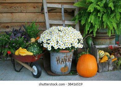 Harvest decorations with pumpkins and gourds along with flowers and much more.
