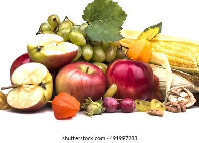 Harvest of the favorite ripened grapes apples and corn helpful