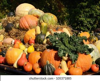 Harvest festival, thanksgiving market
