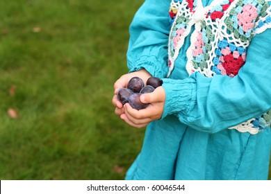 Harvest of fresh fruits in girl's hands