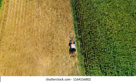 Harvest of hay, tractor using rotary rakes on agriculture crops. Aerial view, dron view