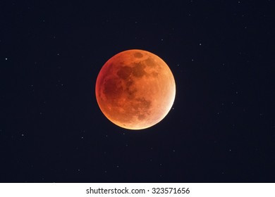 Harvest Moon Lunar Eclipse - Real Orange Super Blood Moon - Telescope view with night sky and stars in the background