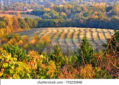 Harvest patterns near Castres, France