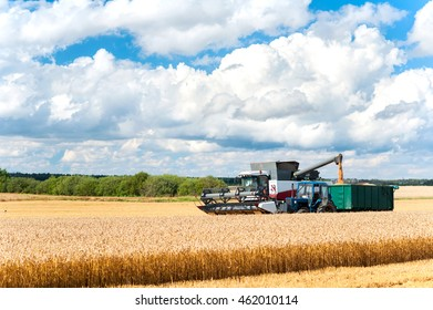 Harvest season. Combine cutting wheat on the field. Vibrant outdoors horizontal multicolored image.