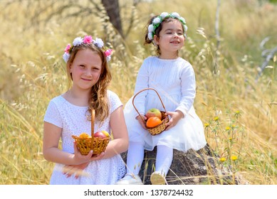Harvest. Shavuot. Two cute smiling little girls holds basket with fruits in a wheat field. Portrait adorable small kids outdoor.