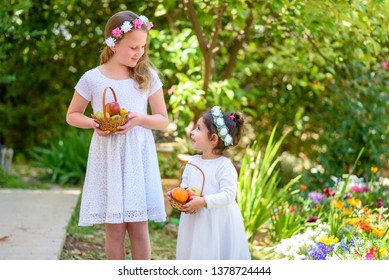 Harvest. Shavuot. Two cute smiling little girls holds basket with fruits at the farm. Portrait adorable small kids outdoor.