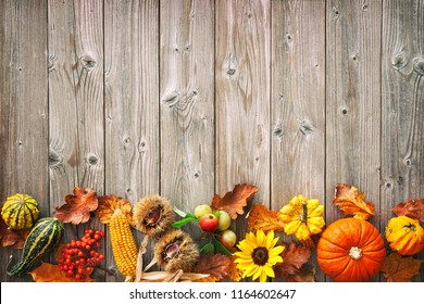 Harvest or Thanksgiving background with autumnal leaves, fruits and gourds on a rustic wooden table