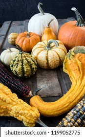 Harvest or Thanksgiving still life of ornamental gourds and pumpkins on an old steamer trunk
