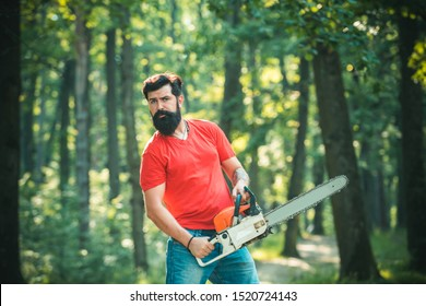 Harvest of timber. Lumberjack concept. Stylish young man posing like lumberjack. Lumberjack worker walking in the forest with chainsaw