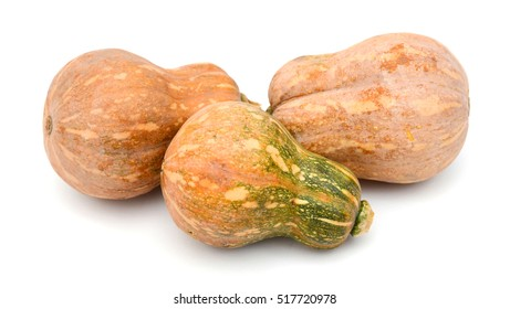 Harvested butternut squash isolated on white
