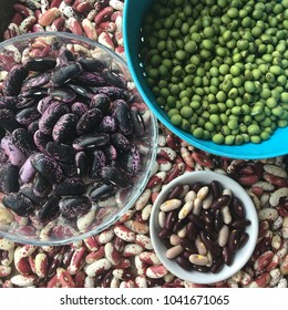 Harvested and dried organic and colorful heirloom beans: scarlet runner, soy, red, and Jacobs cattle
