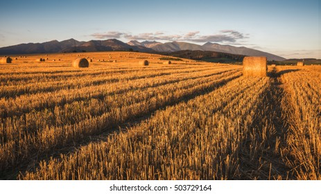 Harvested Field with Hay Bales in Golden Evening Light Under West Tatras Mountains, Slovakia