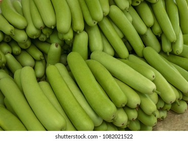 Harvested  green vegetable bottle gourd,{Lagenaria Siceraria}Calabash Gourd,arranged for transportation at agricultural farm in Andhra Pradesh,India,Asia,