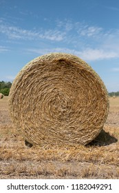 Harvested Hay Field
