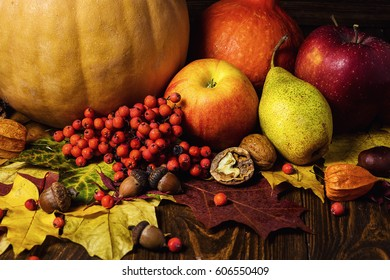 harvested pumpkins with fall leaves and autumn fruit on wooden background