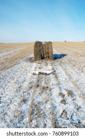 Harvested snowy agricultural field with a roll of mowed straw