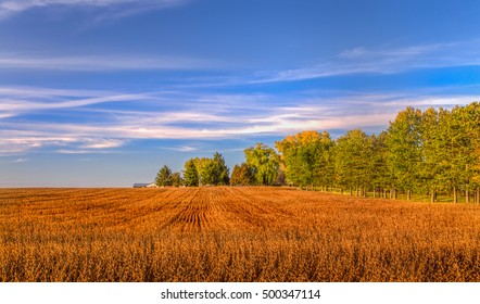 Harvested wheat field in American midwest on autumn day in American midwest.