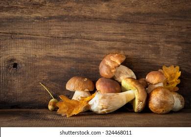 Harvested wild boletus mushrooms on wooden background