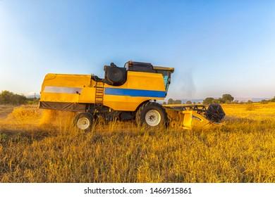 Harvester. Harvesting. Golden spike grains. Grains of wheat. Field of wheat. Istanbul, Turkey.
