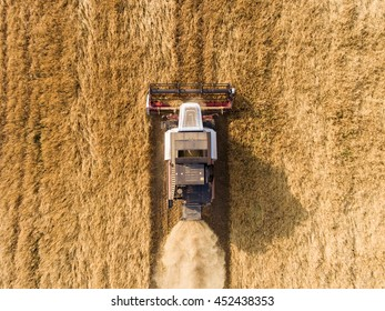 harvester on the wheat field from the top view