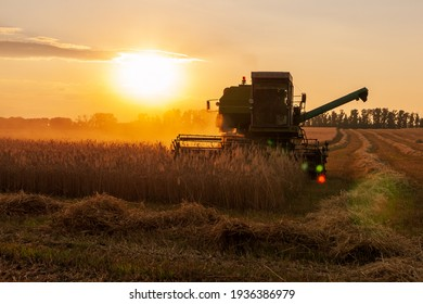 Harvester in a wheat field on a sunset background. Harvesting campaign. The main subject is out of focus. Photo with rainbow artifacts from the lens.