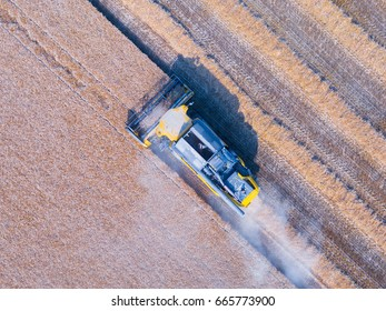 Harvester at work in a wheat field