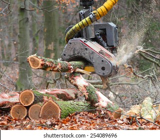 The harvester working in a forest. Closeup with shallow DOF.