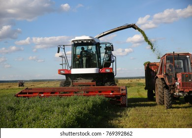 Harvesting alfalfa in the field. A photojournalist photographs the agricultural process.