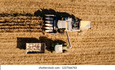 Harvesting Corn aerial details. Farmer using combine, tractor and machinery for autumn harvest