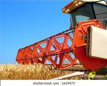 Harvesting the corn field