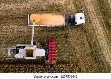 Harvesting corn view from above. Autumn farming. Fall agriculture. Combine harvester and truck on field at work.