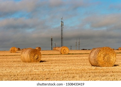 Harvesting. Hay bales in a field under a blue sky. Kinsale. County Cork, Ireland. Countryside natural landscape. Grain crop. Wheat yellow golden harvest in summer.