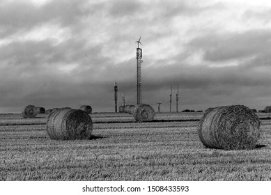 Harvesting. Hay bales in a field under a blue sky. Kinsale. County Cork, Ireland. Countryside natural landscape. Grain crop. Wheat yellow golden harvest in summer. In black and white.