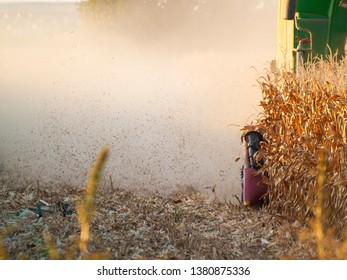 A harvesting machine in a field harvesting corn at sunset in autumn in Salamanca (Spain)
