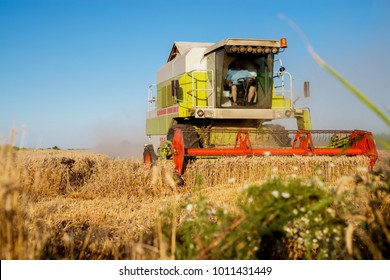 Harvesting machine working at field in sunny morning. Agriculture concept. Combine harvester at wheat field.