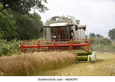 Harvesting the rapeseed field in Northumberland England with a tractor and combine harvester