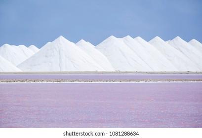 Harvesting Salt on Dutch Caribbean Island Bonaire
