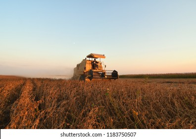 harvesting soybean field with combine on a sunset light near city Novi Sad in Vojvodina,Serbia