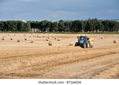 Harvesting tractor in a sunny wheat field in summer