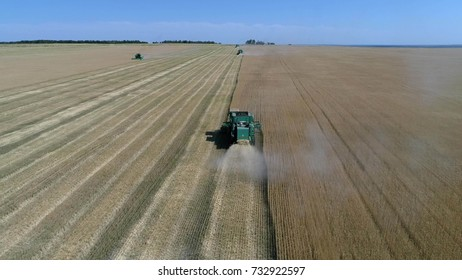 Harvesting the wheat field with agricultural machinery. Aerial photography with a drone