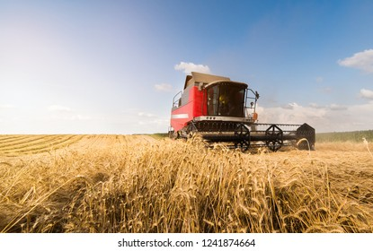 Harvesting of wheat fields with combine