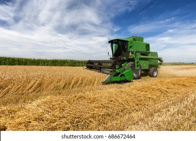 Harvesting wheat harvester on a sunny summer day