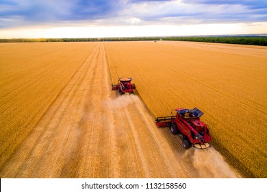 Harvesting of wheat in summer. Two red harvesters working in the field. Combine harvester agricultural machine collecting golden ripe wheat on the field. View from above. - Shutterstock ID 1132158560