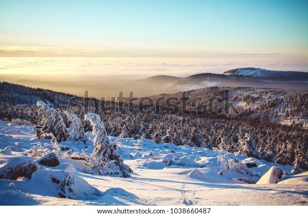 Harzer Winter