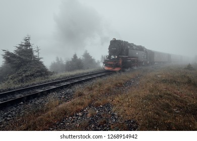 The Harz-entrance to the narrow gauge railway. Railway in the fog