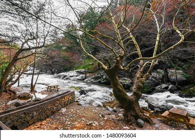 The Hasanboguldu river and waterfalls Lake at Ida Mountain. (in Turkish: Kazdagi, meaning Goose Mountain) Edremit district of Balikesir province of Turkey