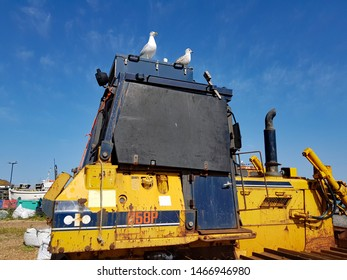 Hastings,East Sussex/UK 06-29-19 Hastings fishing beach . A rusty JCB sits on the shingle beach . 2 seagulls sit on its roof on a beautiful day with a blue sky behind